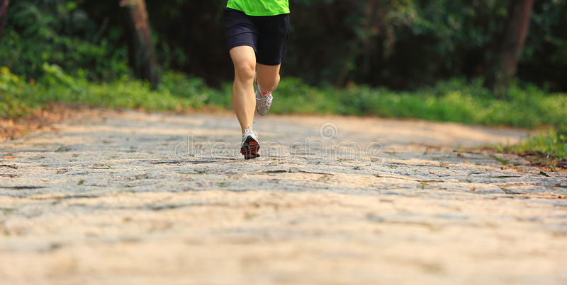 Kobieta śladu biegacz iść na piechotę bieg w lesie fotografia stock