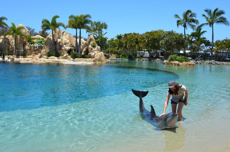 Kobieta antrakt z delfinem obrazy royalty free