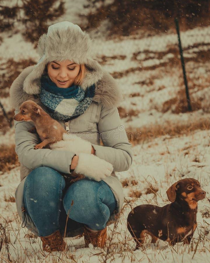 Kobieta bawi? si? z psami podczas zimy fotografia stock