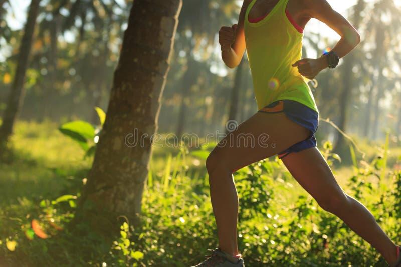 Kobieta bieg przy ranku tropikalnym lasowym śladem zdjęcie royalty free