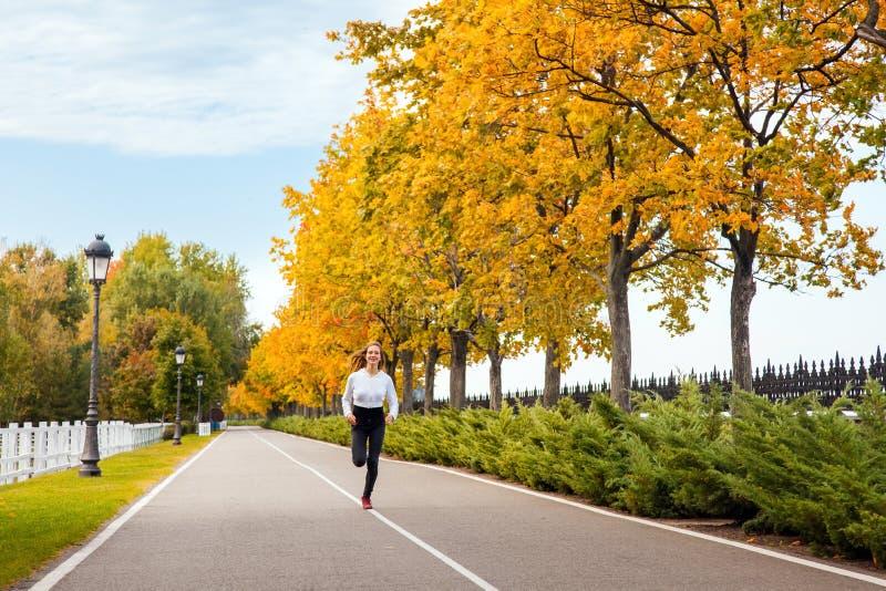 Kobieta bieg w jesieni lasowej Młodej dorosłej dziewczynie jogging w spadku zdjęcia stock
