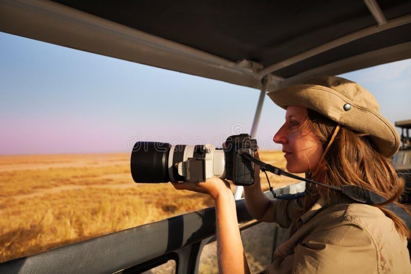 Kobieta bierze fotografię na pokładzie safari dżip przy sawanną obrazy royalty free