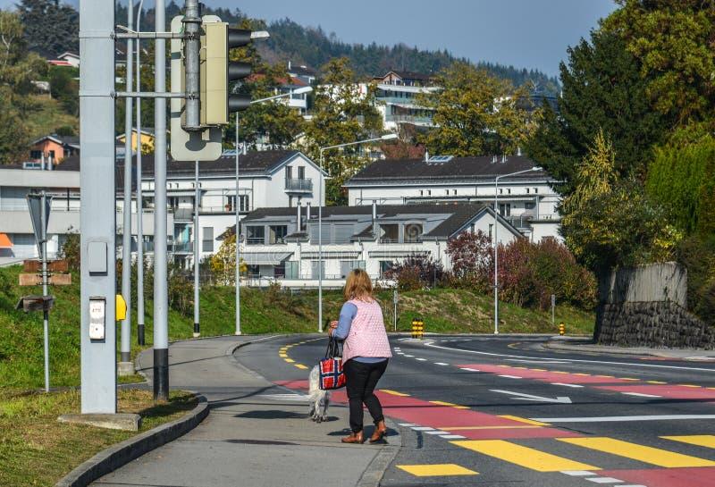 Kobieta bierze spacer z psem zdjęcie stock
