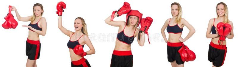 Kobieta bokser zdjęcie royalty free
