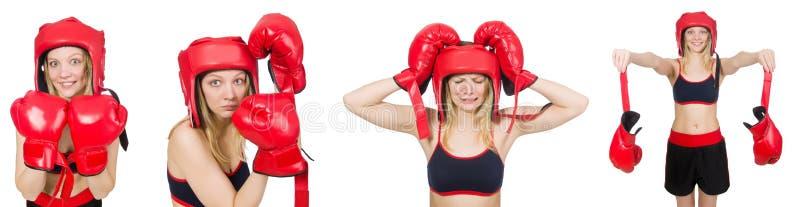 Kobieta bokser obrazy stock