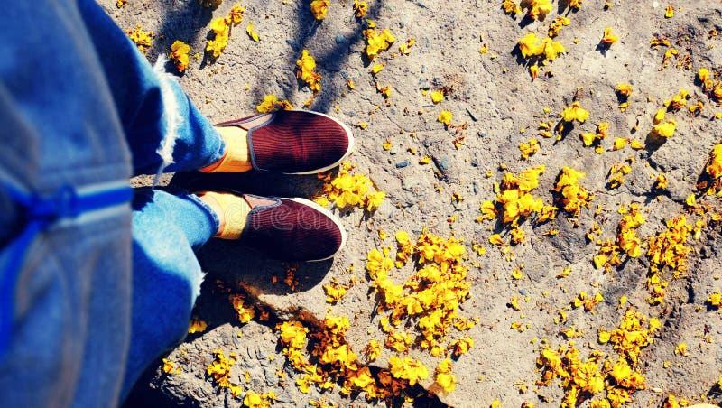 Kobieta cieki są ubranym niebieskich dżinsy z żółtym płatka spadkiem w letnim dniu zdjęcie royalty free
