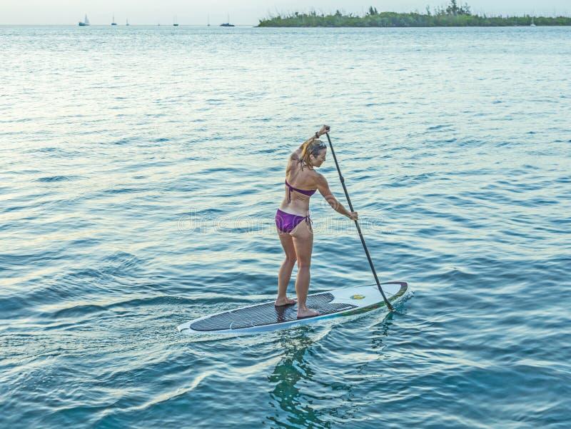 Kobieta cieszy się Stoi Up Paddle surfing w Key West fotografia royalty free