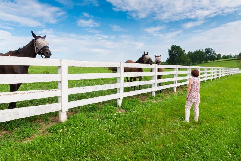 Kobieta cieszy się wieś widok z zieleń koniami i paśnikami zdjęcie stock