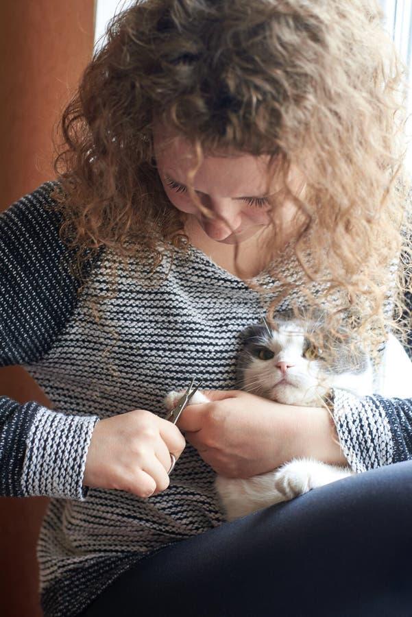 Kobieta ciie pazury kot z gwoździ nożycami, zwierzę domowe opieka fotografia stock