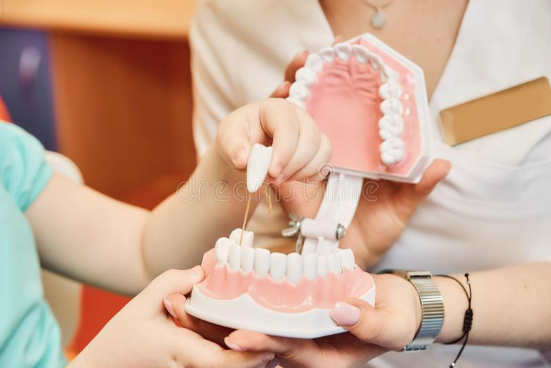 Kobieta dentysta uczy małej dziewczynki szczotkować jej zęby obrazy royalty free