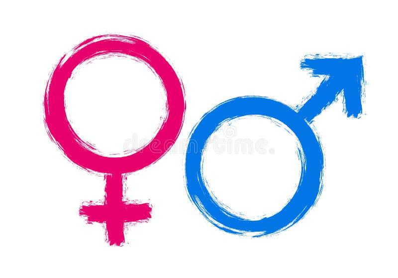 Kobieta i samiec znaki rysujący z muśnięciem dla plciowej definicji ikony lub mężczyzny i kobiety ilustracja wektor