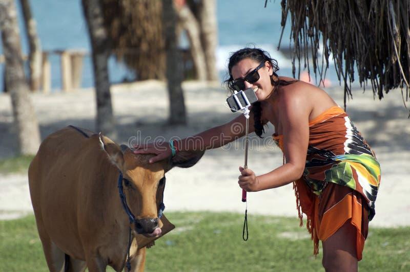 Kobieta jest ubranym okulary przeciwsłonecznych bierze selfie z krową w Lombok, Wietnam obraz royalty free