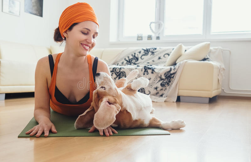 Kobieta joga praktykę bawić się z ona ale pies próbę w domu obraz stock