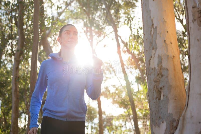 Kobieta jogging w lesie obraz royalty free