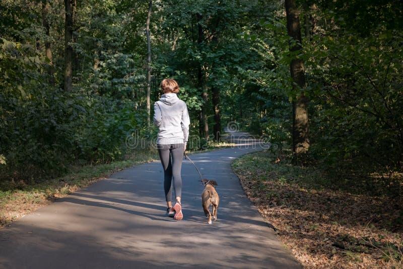Kobieta jogging z psem w pięknej lasowej Młodej żeńskiej osobie obrazy stock