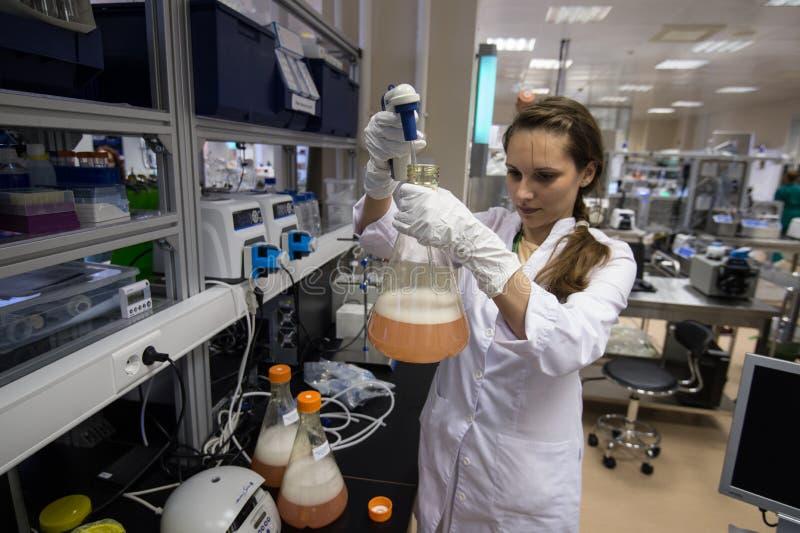 Kobieta laborancki asystent z kolbą w jego ręce w biochem fotografia stock