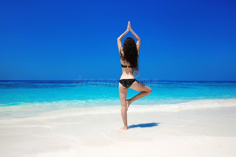 Kobieta medytuje w drzewnej joga pozyci na egzotycznej plaży Zen, zdjęcia royalty free