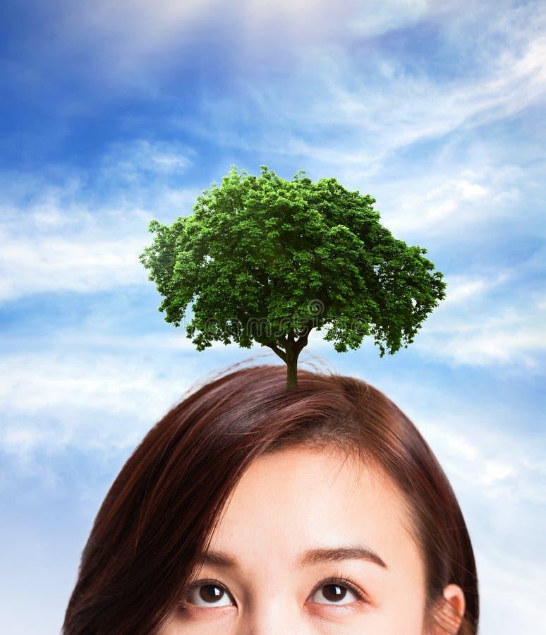 Kobieta myślącego pomysłu wzrostowy drzewo na her& x27; s głowa obrazy stock