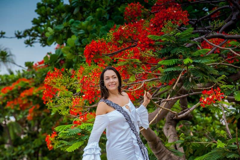Kobieta na biel sukni obok pięknego kwitnącego drzewa przy ścianami otacza kolonialnego miasto Cartagena De Indias fotografia royalty free