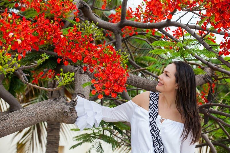 Kobieta na biel sukni obok pięknego kwitnącego drzewa przy ścianami otacza kolonialnego miasto Cartagena De Indias zdjęcie royalty free