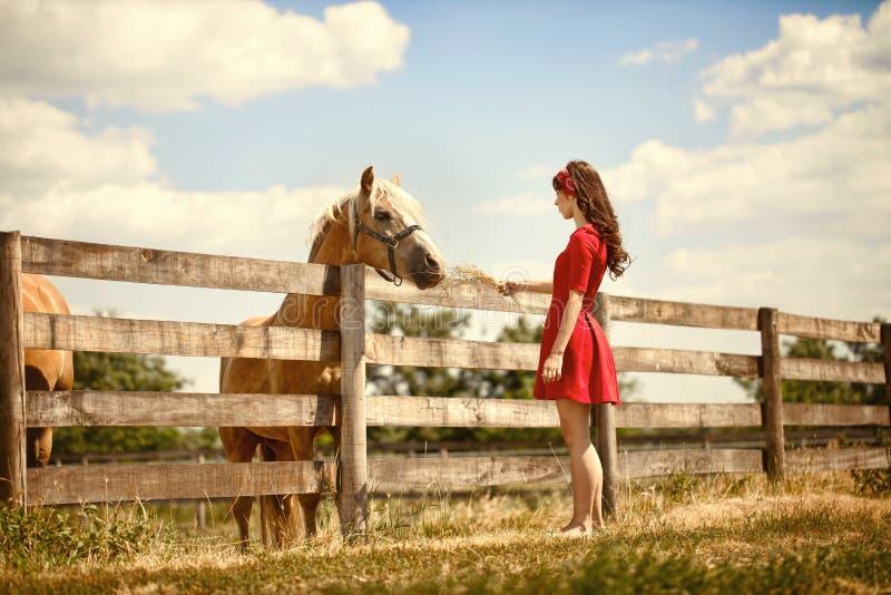 Kobieta na gospodarstwie rolnym z jej koniem zdjęcia stock