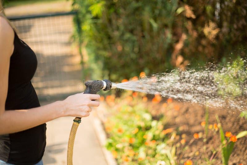 Kobieta nalewa jej ogród obrazy stock