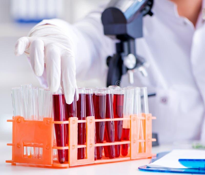 Kobieta-naukowiec przeprowadzająca eksperyment w laboratorium obrazy stock