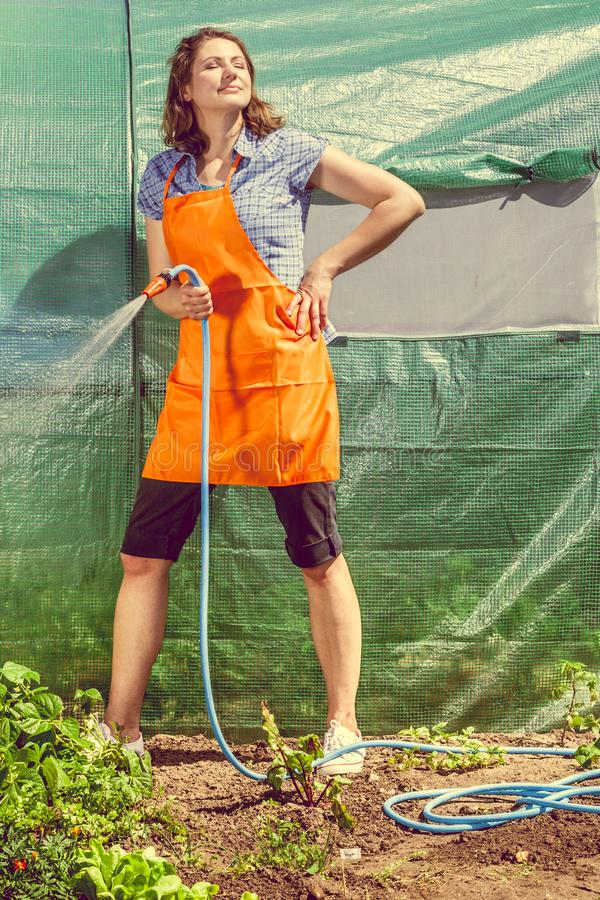 Kobieta nawadnia ogród z wężem elastycznym zdjęcia royalty free