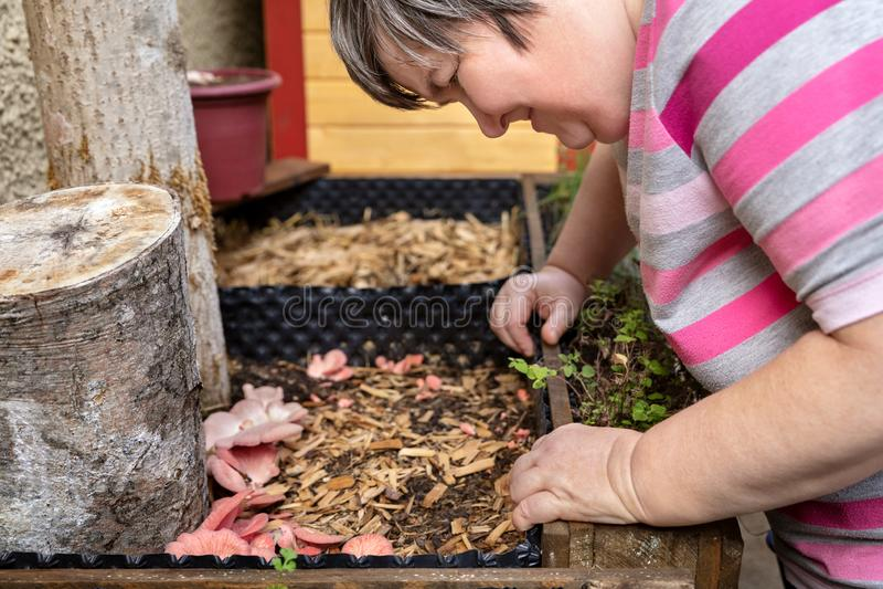 Kobieta niepełnosprawna psychicznie patrzy na grzyby lub grzyby obraz royalty free