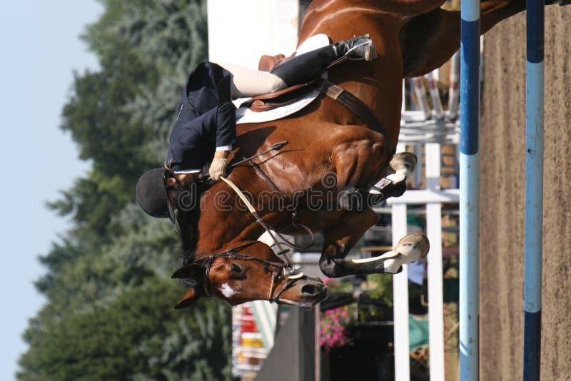 kobieta oxer jumping zdjęcia royalty free