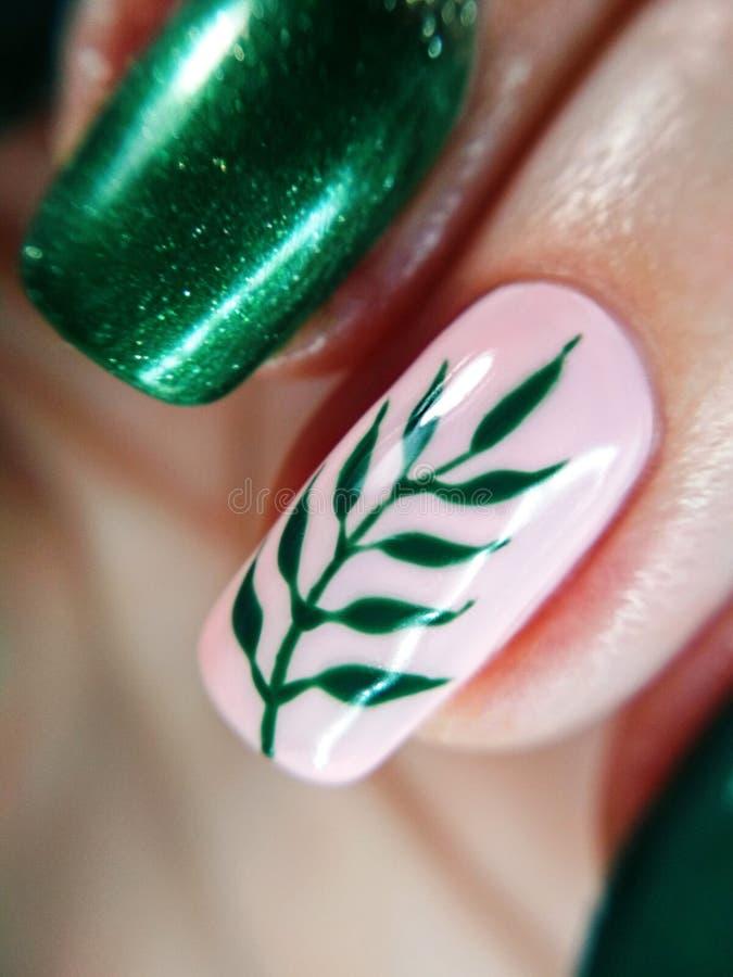 Kobieta palca menchii natury zieleni gałąź liścia manicure'u gel gwoździa połysku swatch projekta sztuki piękna nagiej mody makro obraz royalty free