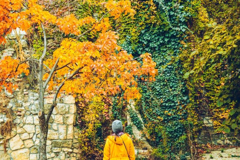 Kobieta patrzeje na ścianie jesieni piękni barwioni liście zdjęcia stock