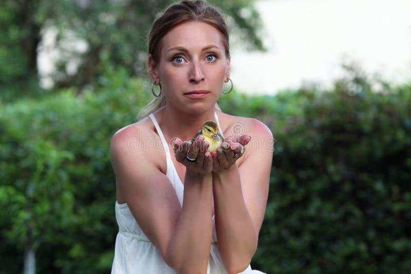 Kobieta patrzeje nowonarodzonego kaczątka zaskakiwał obraz royalty free