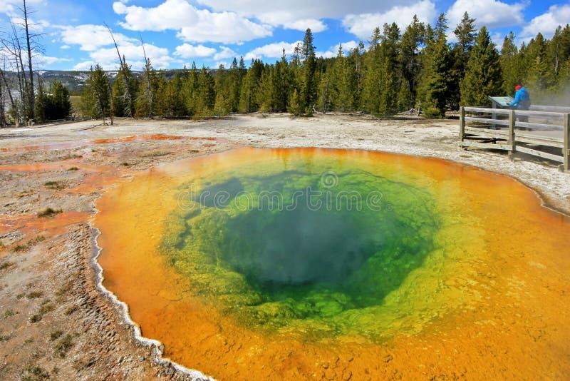 Kobieta patrzeje sławnego ranek chwały basenu w Yellowstone parku narodowym, usa obrazy royalty free