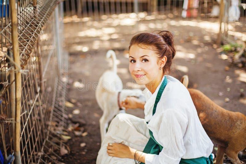 Kobieta pracuje w zwierzęcym schronieniu zdjęcie royalty free