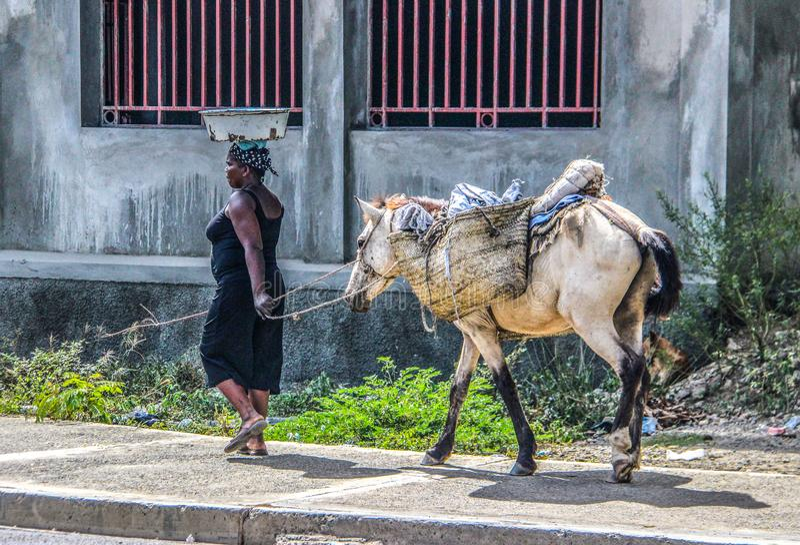 Kobieta prowadzi jucznego konia wzdłuż wiejskich ulic w Haiti fotografia royalty free