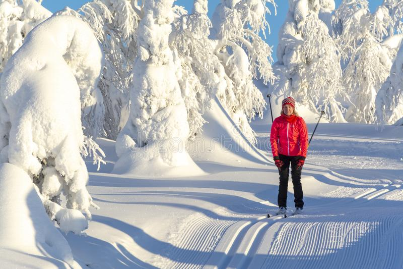 Kobieta przecinaj?cego kraju narciarstwo fotografia royalty free