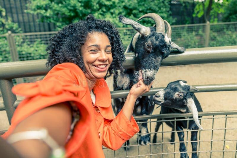 Kobieta przy zoo obrazy stock