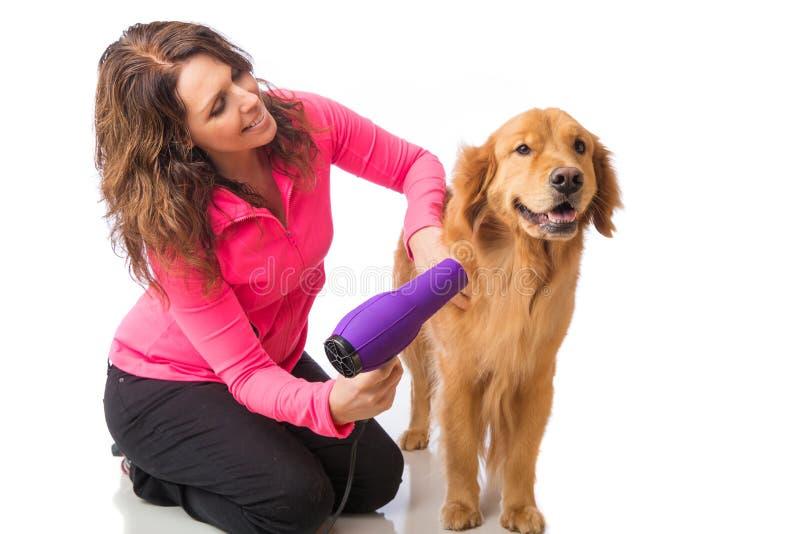 Kobieta przygotowywa psa z blowdryer zdjęcia royalty free