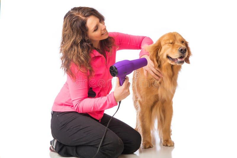 Kobieta przygotowywa psa z blowdryer zdjęcia stock