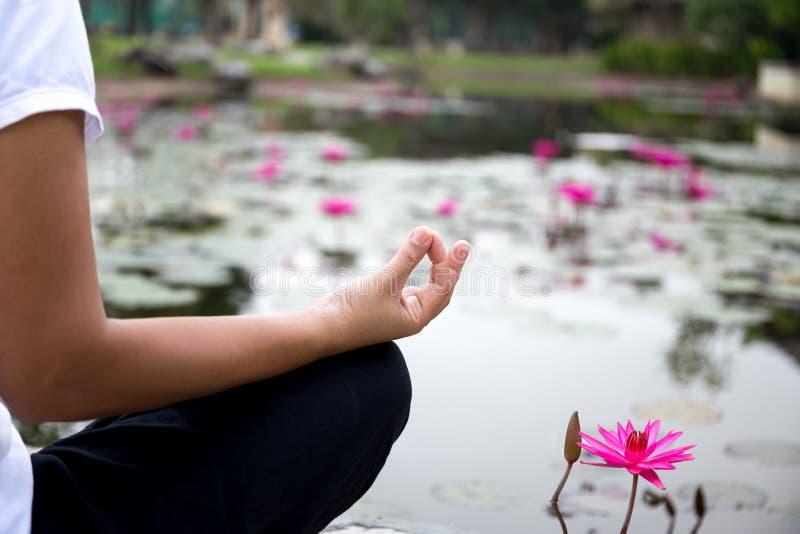 Kobieta robi joga medytaci obok lotosowego stawu fotografia stock