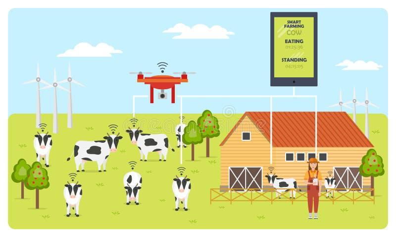 Kobieta rolnik z pastylką na nowożytnym nabiału gospodarstwie rolnym Mądrze uprawia ziemię mobilny zastosowanie ilustracji