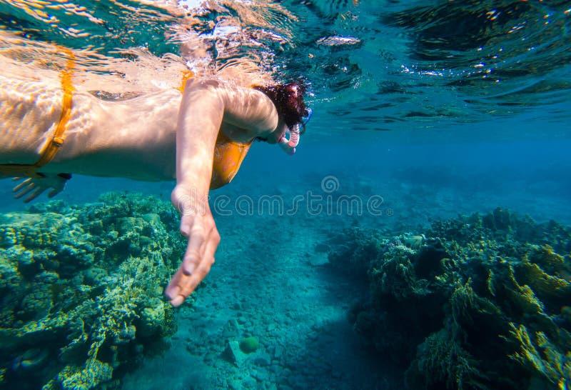 Kobieta snorkeling nad rafa koralowa fotografia stock