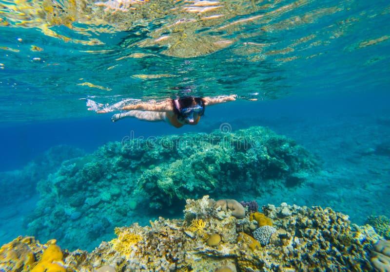 Kobieta snorkeling nad rafa koralowa obraz stock