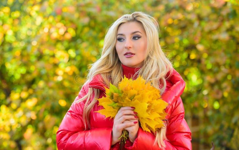 Kobieta spacer w jesie? parku Dziewczyny makeup twarzy chwyta wiązki marzycielscy liście klonowi Dama pozuje z liść jesieni natur zdjęcie stock