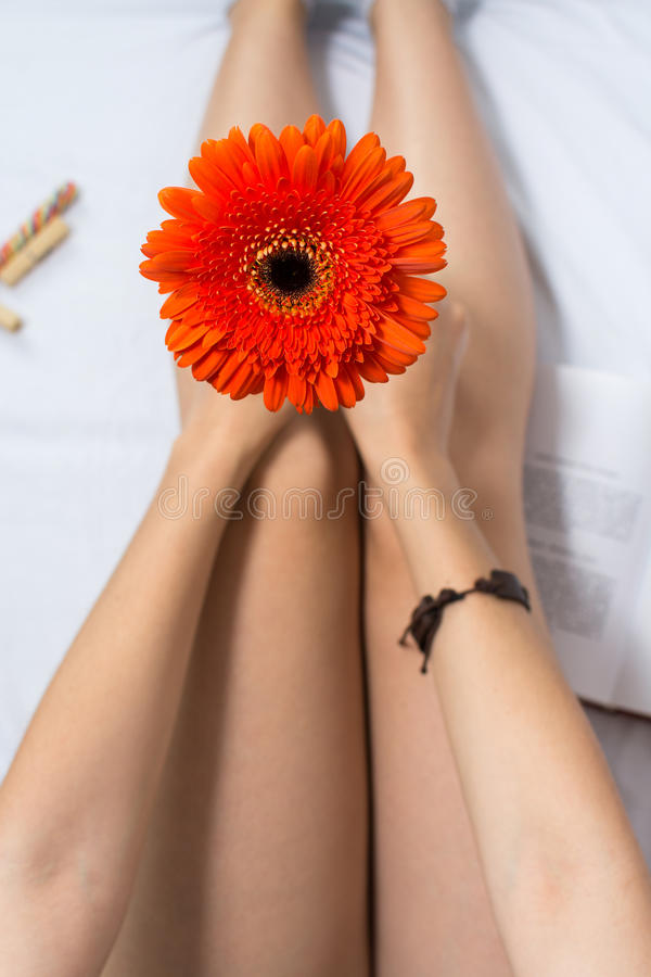 Kobieta trzyma gerbera kwiatu w łóżku zdjęcie stock