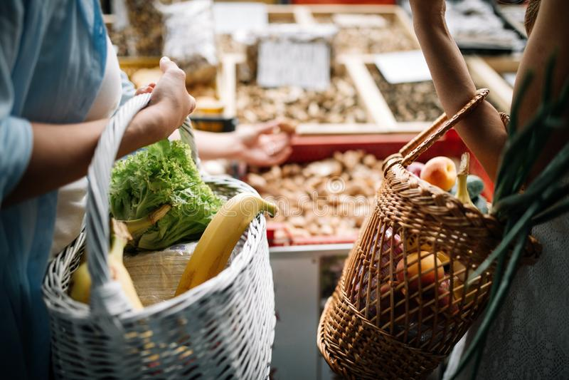 Kobieta trzyma kosz z zdrowymi organicznie warzywami obraz stock
