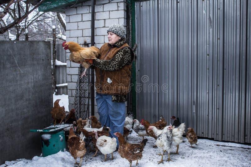 Kobieta trzyma kurczaka stary dom obrazy royalty free