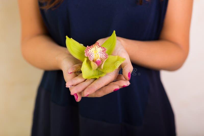 Kobieta trzyma kwiatu zdjęcia royalty free