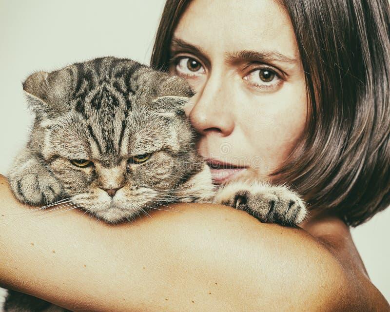 Kobieta trzyma thoroughbred Szkockiego fałdu kota który uwalniał pazury zdjęcie stock